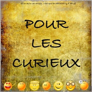 [POUR LES CURIEUX] N°4 dans POUR LES CURIEUX image49-300x300